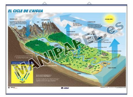 LÁMINAS DE NATURALEZA CATALÁN ED-919 El Sistema Solar / El Cicle de l' Aigua