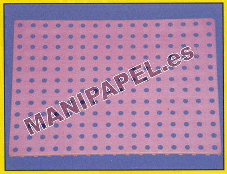 PLACA PERFORADA (6 unidades) LADO454