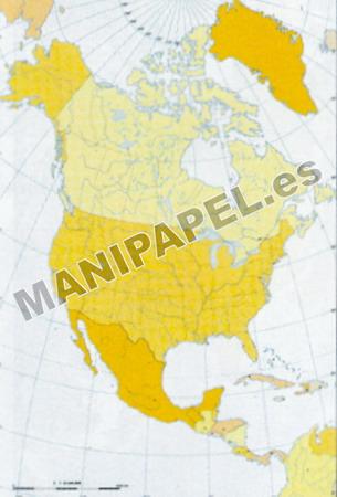 MAPA MUDO POLÍTICO COLOR (100 unidades) 24585 América Norte 100