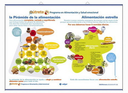 LÁMINAS DE NUTRICIÓN